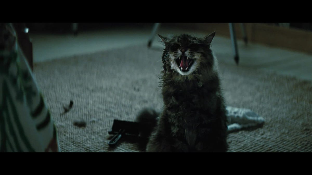 """""""Pet Sematary"""" is Getting a Prequel and Casting is Underway"""